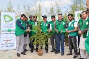 Etisalat Launches the Second Phase of its Tree Plantation Campaign